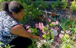 photo d'une residente dans le jardin communautaire